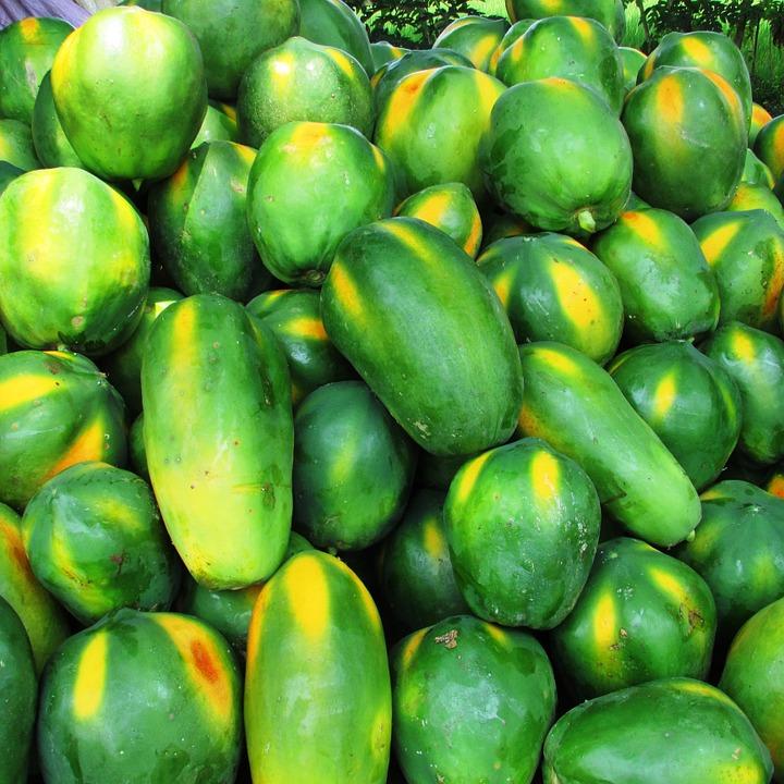 papaya-331279_960_720.jpg