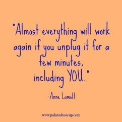 Almost-everything-will-work-again-if-you-unplug-it-for-a-few-minutes-including-you.-Anne-Lamott
